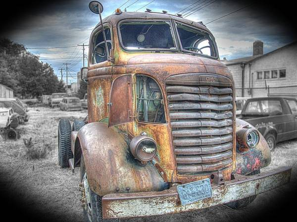 Photograph - Workhorse by HW Kateley