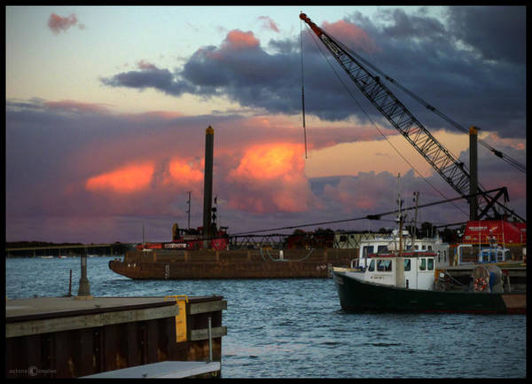 Photograph - Working Harbor by Tim Nyberg