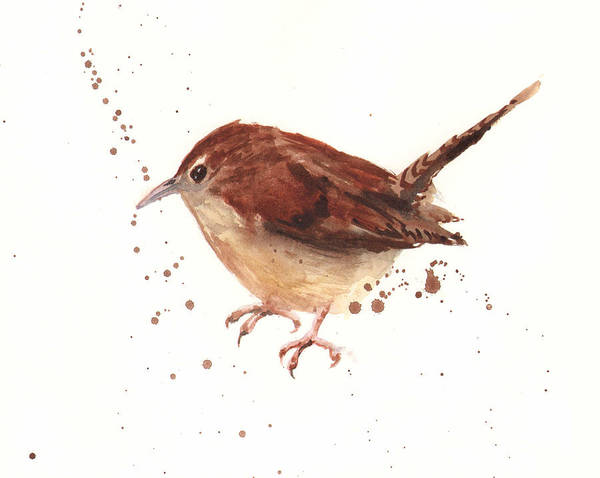 Wall Art - Painting - Wren Watercolor by Alison Fennell