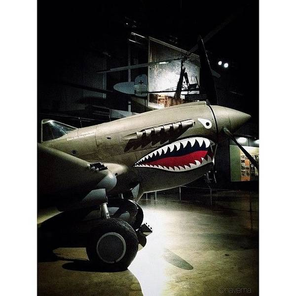 Military Photograph - Ww2 Curtiss P-40e Warhawk by Natasha Marco