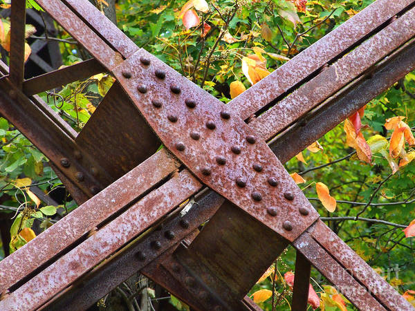 Photograph - X Marks The Spot Photograph by Kristen Fox