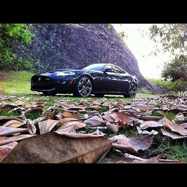 Jaguar Photograph - Xrs #car #jaguar #racing #instagram by Ariana Hernandez