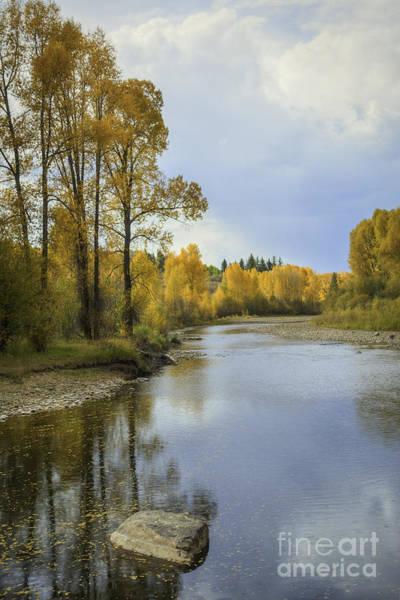 Photograph - Yampa River Colorado by David Waldrop