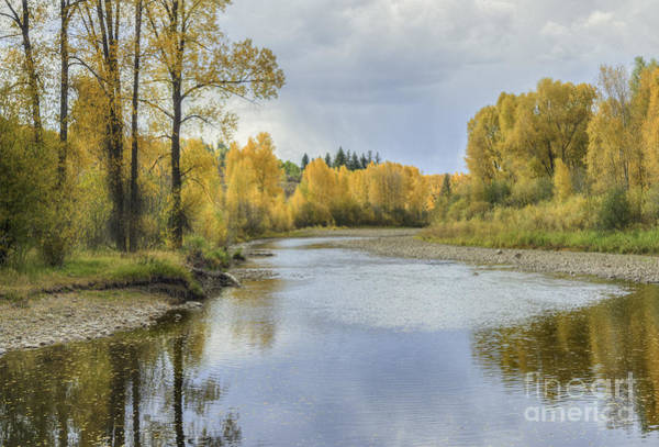 Photograph - Yampa River Colorado II by David Waldrop