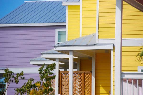 John Schneider Wall Art - Photograph - Yellow 3 Purple1 by John Schneider