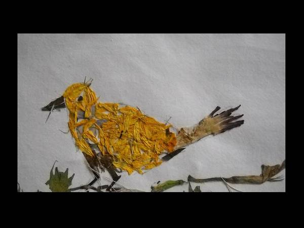 Twig Mixed Media - Yellow-bird Withtwig by Basant Soni