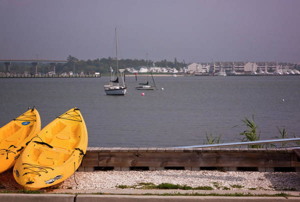 Photograph - Yellow Boats In Cape May by Tom Singleton