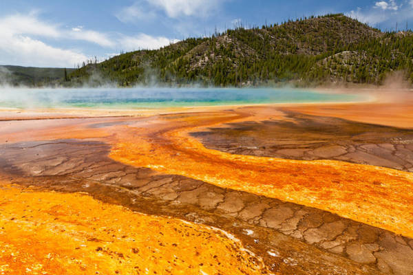 Yellow Brick Road - Grand Prismatic Spring Art Print