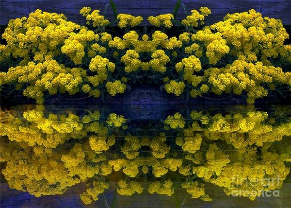 Digital Art - Yellow Flowers by Dale   Ford