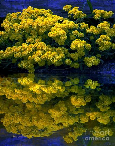Digital Art - Yellow Flowers Reflected by Dale   Ford