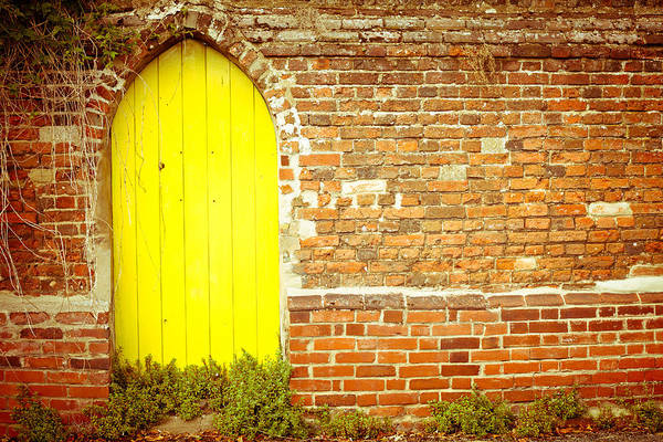 Privacy Photograph - Yellow Gateway by Tom Gowanlock