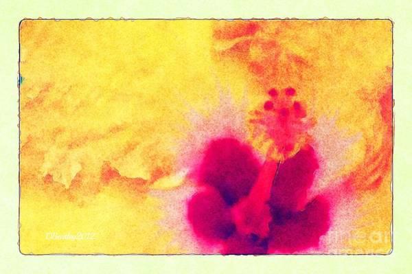 Yellow Hibiscus Flower Art Print