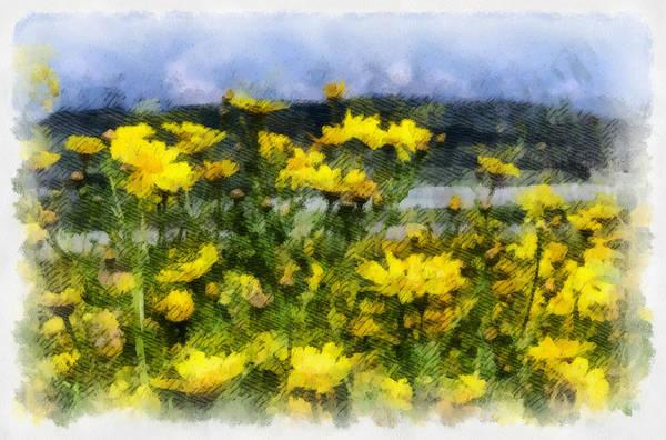 Photograph - Yellow Landscape by Michael Goyberg