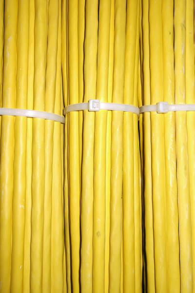 Photograph - Yellow Network Cables by Matthias Hauser