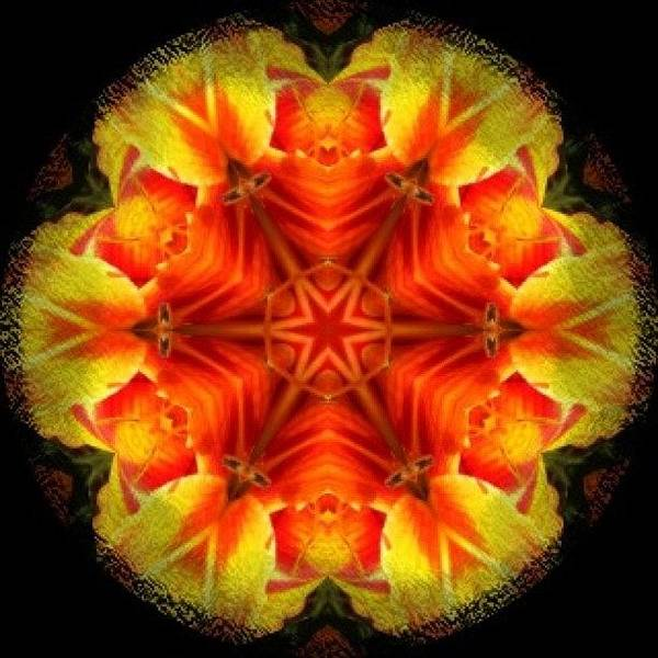 Fractal Wall Art - Photograph - #yellow #orange And #red #star #fractal by Pixie Copley