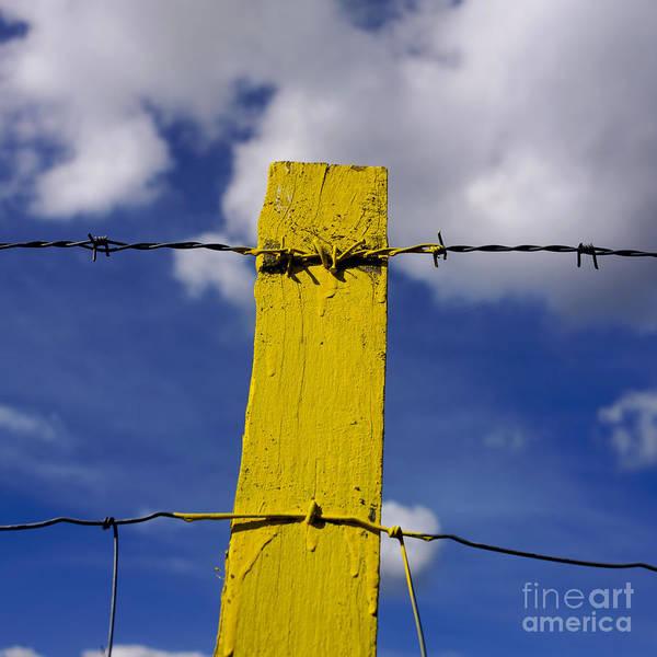 Entry Photograph - Yellow Post by Bernard Jaubert