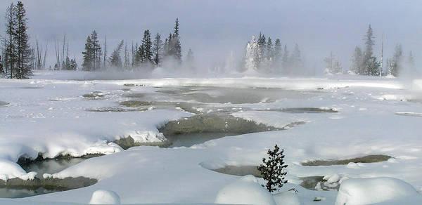 Photograph - Yellowstone At Dawn by Pat Moore