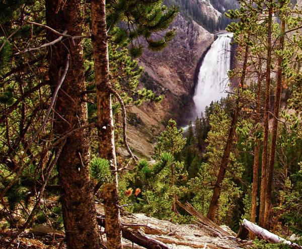 Digital Art - Yellowstone Falls  by Gary Baird