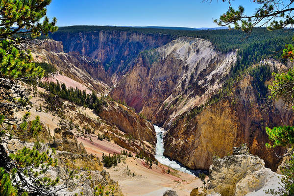 Photograph - Yellowstone Grand Canyon North Rim View by Greg Norrell