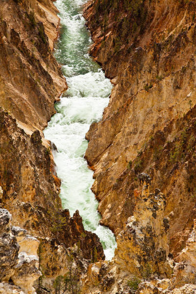Photograph - Yellowstone River by Adam Pender