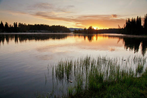 Photograph - Yellowstone River At Sunrise by D Robert Franz