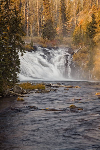 Whitewater Falls Photograph - Yellowstone Waterfall At Autumn by Andrew Soundarajan