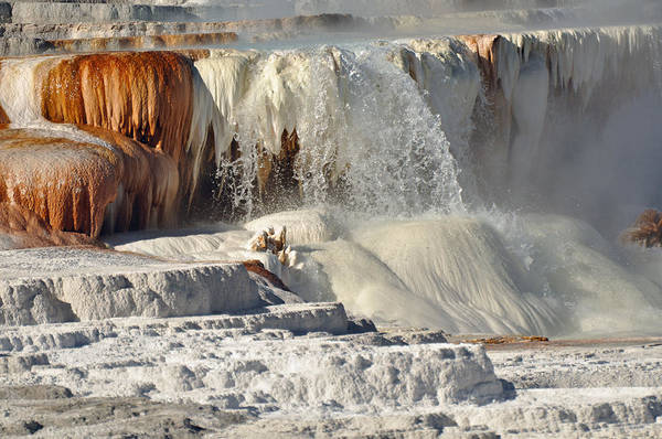 Photograph - Yellowstone's Canary Springs 003 by Bruce Gourley