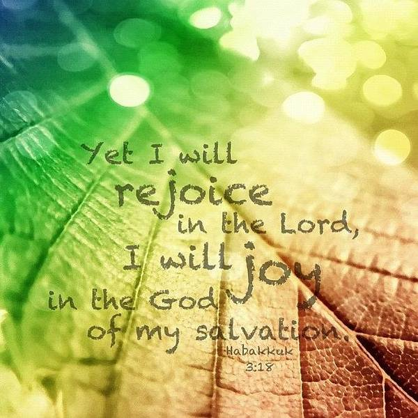 Wall Art - Photograph - yet I Will Rejoice In The Lord, I by Traci Beeson