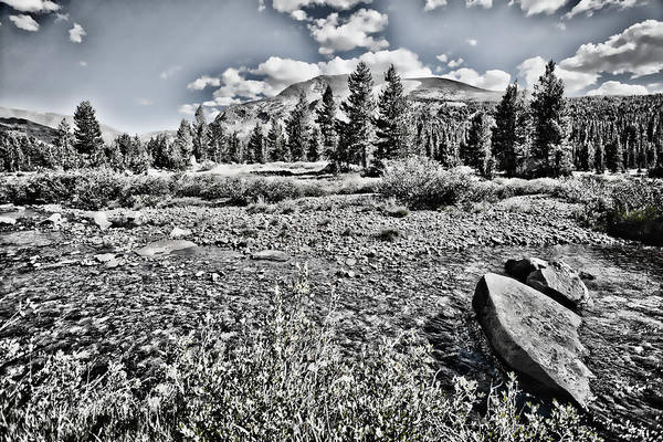 Tioga Photograph - Yosemite Afternoon by Bonnie Bruno