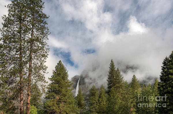 Photograph - Yosemite Falls by Sharon Seaward