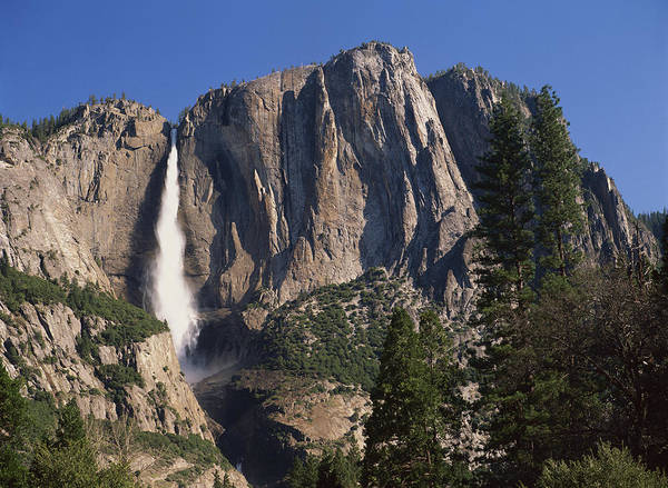 Photograph - Yosemite Falls Yosemite National Park by Tim Fitzharris