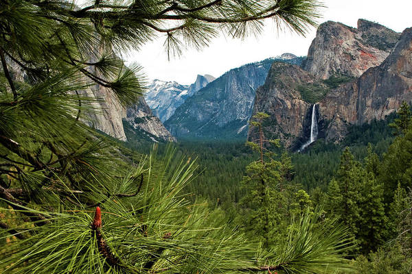 Photograph - Yosemite From Tunnel View by Lorraine Devon Wilke