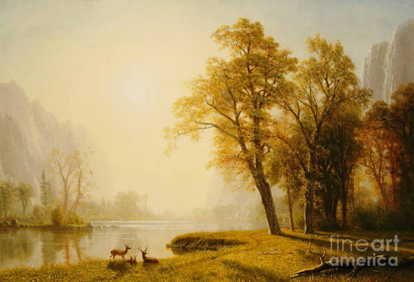 Painting - Yosemite Valley by Albert Bierstadt