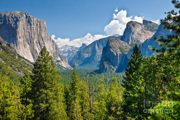 Photograph - Yosemite Valley  by Susan Cole Kelly