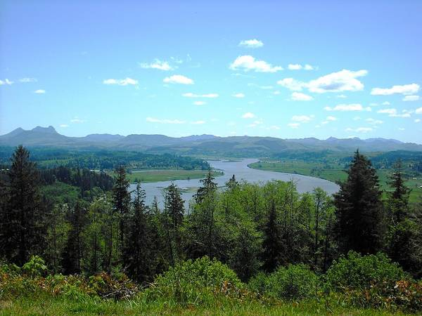 Youngs River And Saddle Mountain Art Print