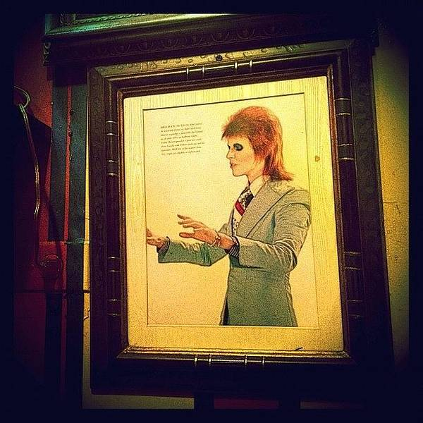 Musicians Wall Art - Photograph - Ziggy Stardust by Natasha Marco
