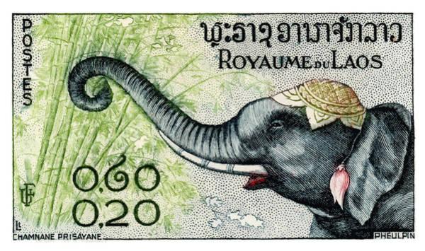 Tusk Wall Art - Digital Art -  1958 Laos Elephant Eating Bamboo Postage Stamp by Retro Graphics