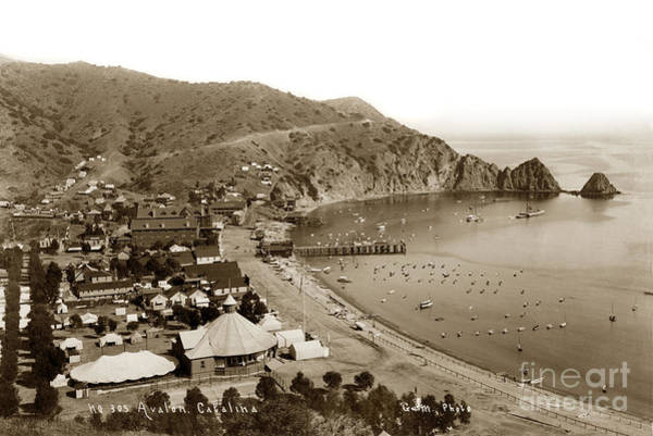 Photograph -  Avalon Bay Catalina As Seen From The Hillside. Circa 1895 by California Views Archives Mr Pat Hathaway Archives