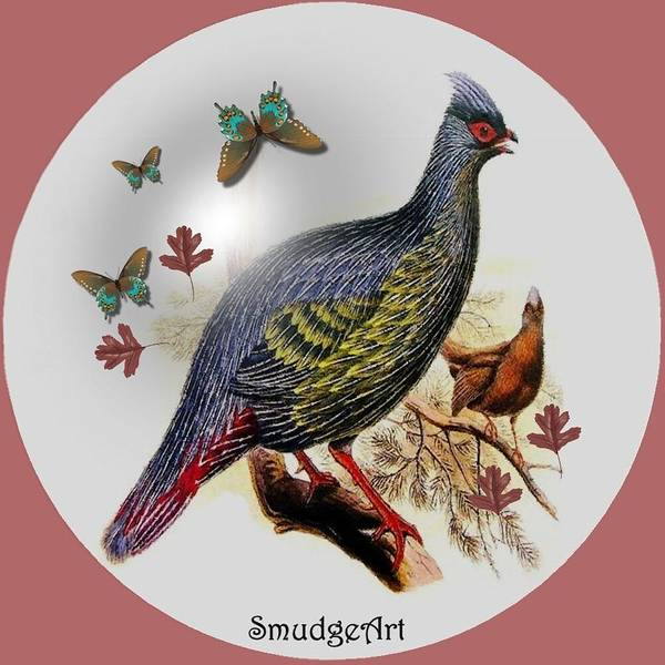 Pheasant Digital Art -  Blood Pheasant by Madeline  Allen - SmudgeArt