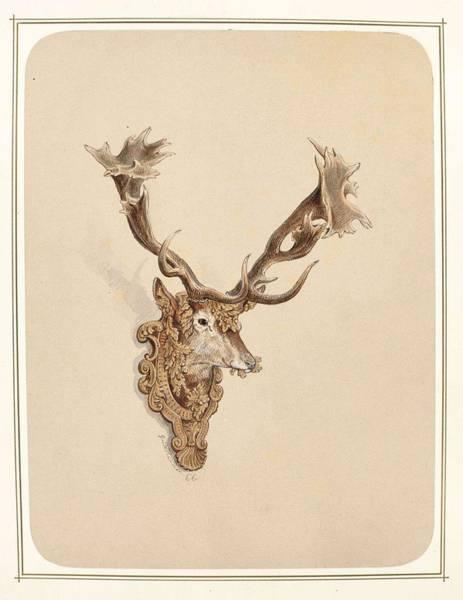 Painting - , Buck Head by Artistic Panda