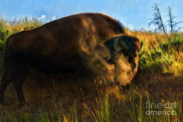 Photograph -  Buffalo Smoke by Blake Richards