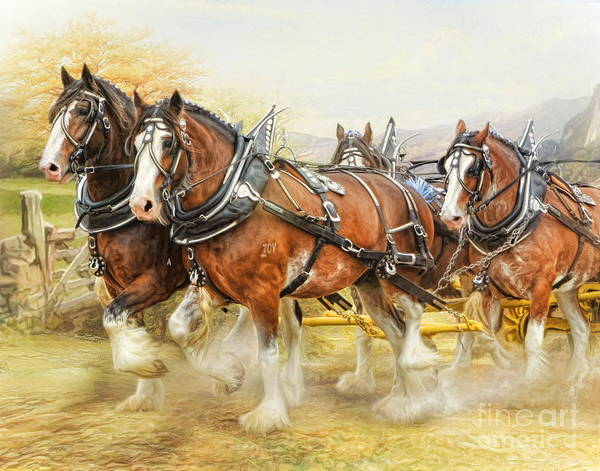 Wall Art - Digital Art -  Clydesdales In Harness by Trudi Simmonds