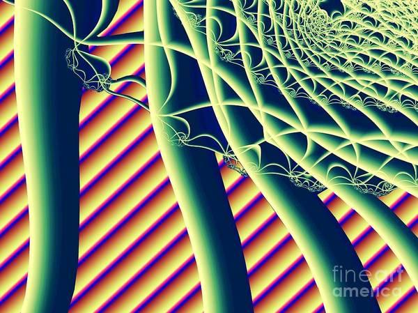 Pea Digital Art -  Fabaceae by Ron Bissett