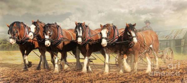 Wall Art - Digital Art -  Horse Power by Trudi Simmonds