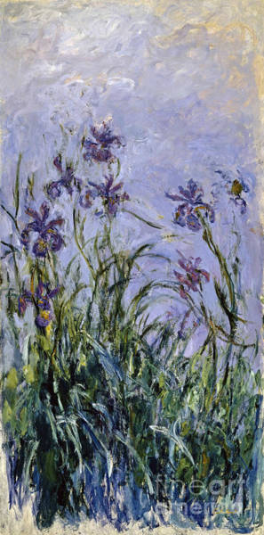Painting -  Iris Mauves by Celestial Images