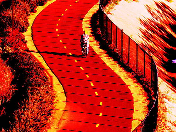 Wall Art - Photograph -  Red Path  by John King