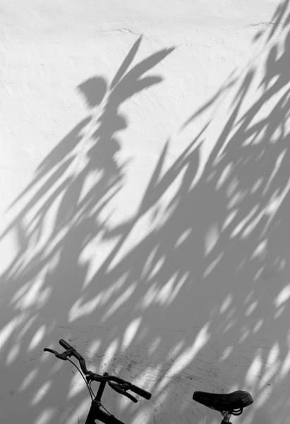 Wall Art - Photograph -  Shadow Bath by Prakash Ghai