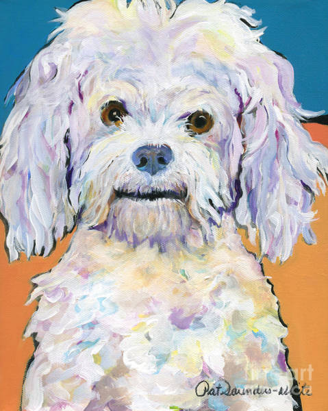 Painting -  Snowball by Pat Saunders-White
