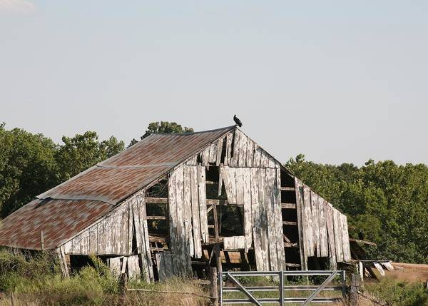 Moberly Photograph -  South Of Moberly by Kathy Cornett
