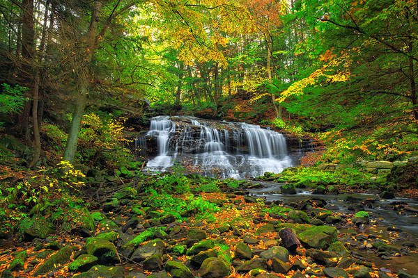 Photograph -  Springfield  Waterfall by Emmanuel Panagiotakis